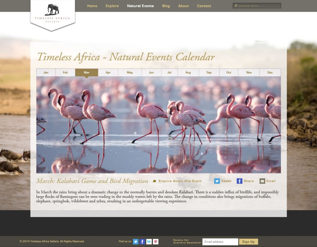 Timeless Africa Safaris website screenshot